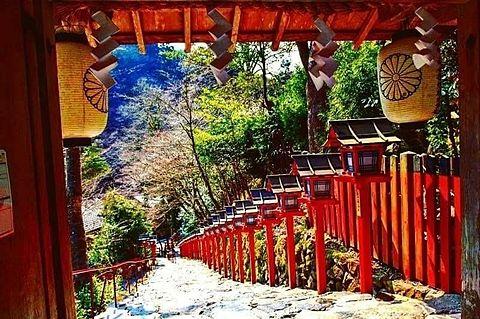 貴船神社の画像 プリ画像