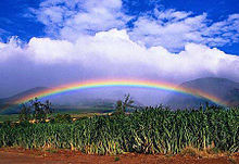 海外の虹の画像(プリ画像)
