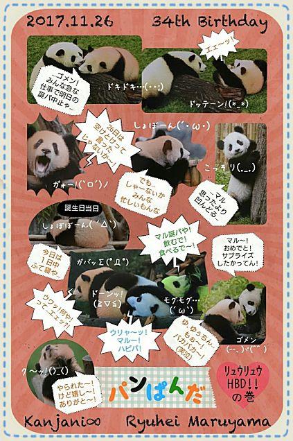 マルHBD!! パンダ ver.の画像(プリ画像)