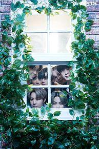 BTS 家族写真の画像(オールに関連した画像)