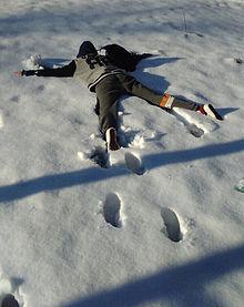 雪の画像(プリ画像)