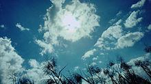 skyの画像(島根に関連した画像)