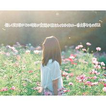虹の画像(恋/ポエム/恋愛に関連した画像)