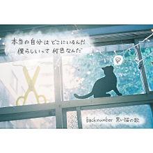 黒い猫の歌の画像(黒い猫の歌に関連した画像)