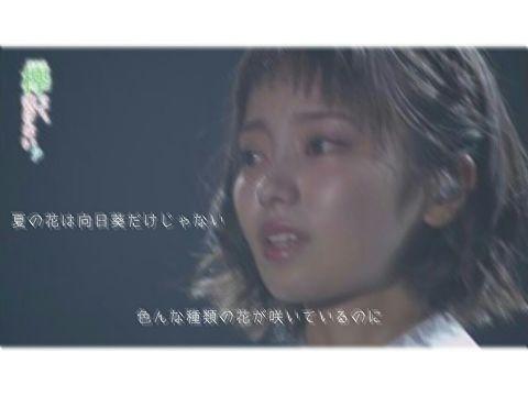 欅 坂 4 6 ◢  夏の花は向日葵だけじゃない /今泉佑唯 _の画像(プリ画像)