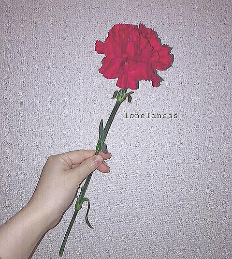 「孤独」の画像(プリ画像)