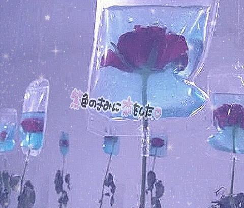佐々木大光🎀の画像 プリ画像