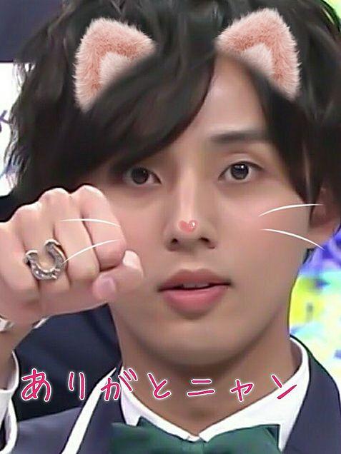 藤ヶ谷太輔 猫の画像 プリ画像