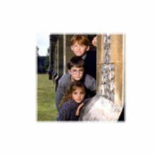 仲良し3人の画像(ハリー ハーマイオニー ロンに関連した画像)