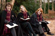 ハリーポッター 3人組の画像(ハリー ハーマイオニー ロンに関連した画像)