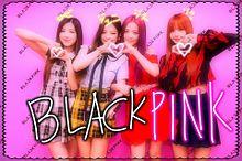 ブラックピンク プリ画像