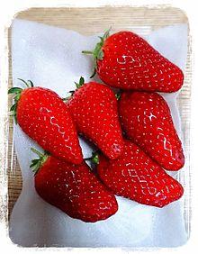 イチゴの画像(プリ画像)