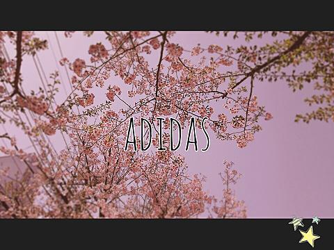 アディダスの画像 プリ画像