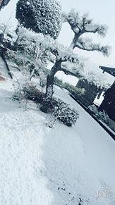 雪景色の画像(プリ画像)