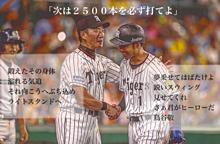 金本知憲 鳥谷敬の画像(阪神タイガースに関連した画像)