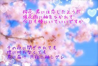 桜花ニ月夜ト袖シグレの画像(プリ画像)