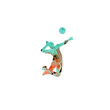 volleyballの画像(排球に関連した画像)