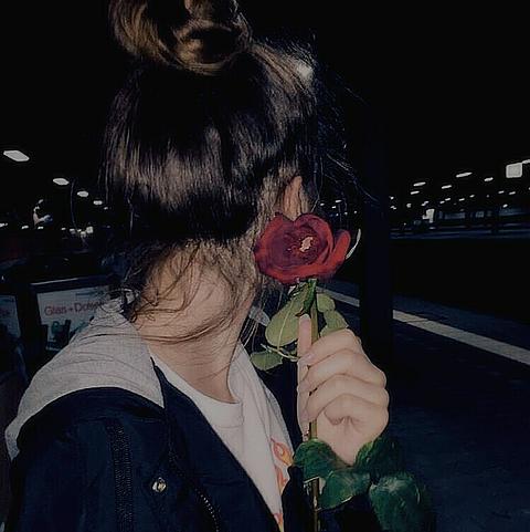 薔薇🥀の画像 プリ画像