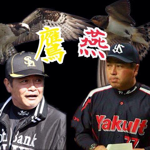日シリ 鷹vs燕の画像(プリ画像)