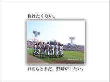 横浜高校硬式野球部の画像(プリ画像)