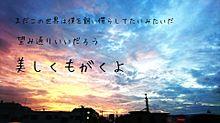 no titleの画像(綺麗な空に関連した画像)