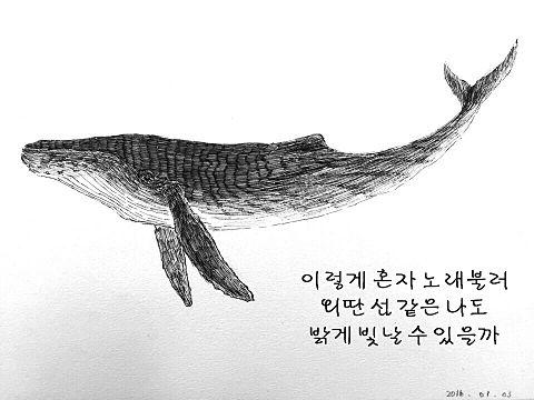 whale52の画像(プリ画像)