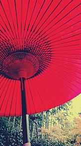 kyotoの画像(京都に関連した画像)