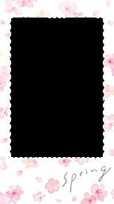 桜 フレームの画像(加工用に関連した画像)