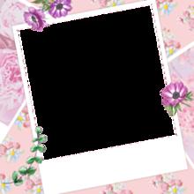 花 フレーム プリ画像