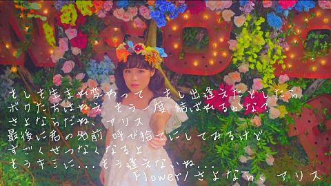 Flower 歌詞画の画像(プリ画像)