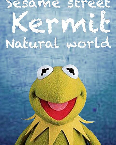Kermit/sesame streetの画像 プリ画像