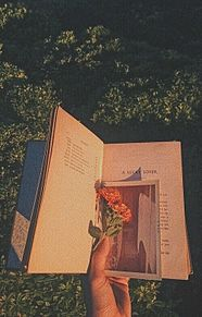 fargelik の画像(ゆめかわいいに関連した画像)