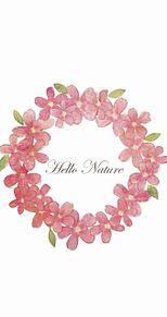 Wreathの画像(おしゃれ 待ち受け 花に関連した画像)