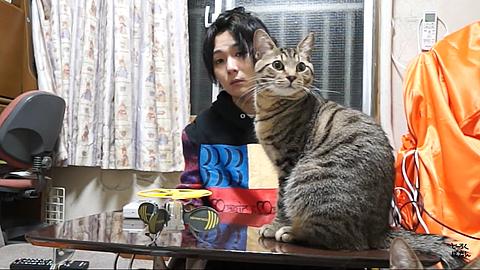 マホト 可愛い♡の画像(プリ画像)