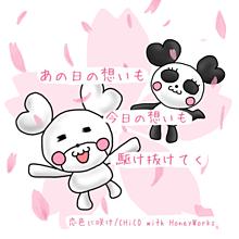 2恋色に咲けの画像(パンダ/シロクマに関連した画像)