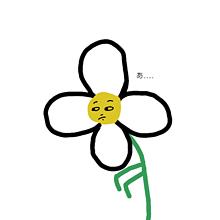花 プリ画像