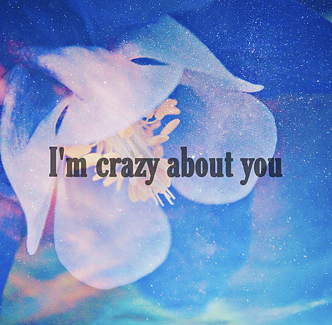 I'm crazy about youの画像(プリ画像)