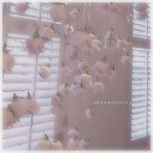 이제 와서 늦었지만당신의 수今さら遅いけどあなたのことが好きの画像(pink/ピンクに関連した画像)