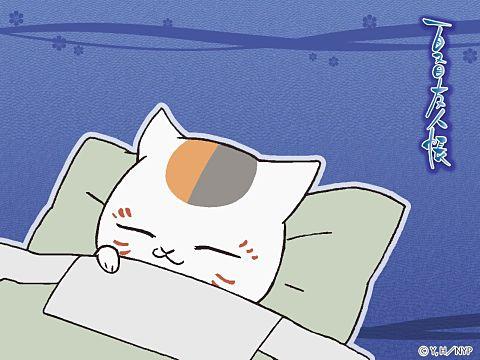 ちゃんとお布団に入ってスヤスヤ眠るにゃんこ先生。