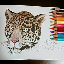 ジャガー一発描き プリ画像