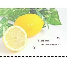かわいい レモンの画像691点3ページ目完全無料画像検索のプリ画像