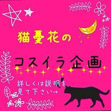 猫憂花の企画の画像(プリ画像)
