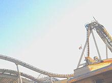 ハリドリの画像101点|完全無料画像検索のプリ画像💓byGMO