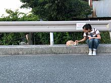 清原かやちゃんの画像(かやちゃんに関連した画像)