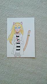 レイちゃん、猫風の画像(殺戮の天使に関連した画像)