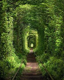 ウクライナ 愛のトンネル おしゃれの画像(ウクライナに関連した画像)
