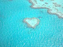 オーストラリア ハートリーフ 写真右下のハートを押してねの画像(オーストラリアに関連した画像)