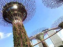 シンガポール  写真右下のハートを押してねの画像(シンガポールに関連した画像)