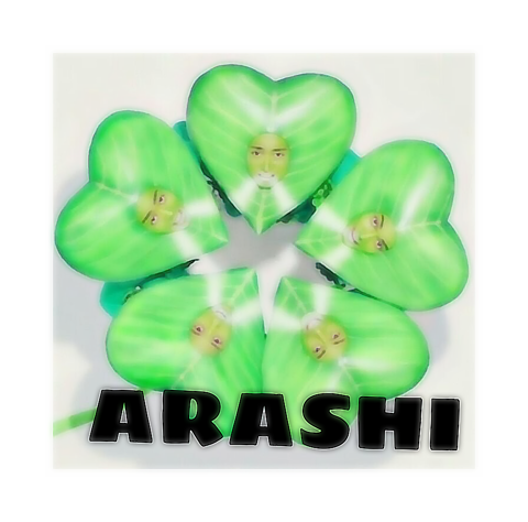 ☆  A R A S H Iの画像(プリ画像)