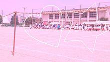 明日は体育祭!